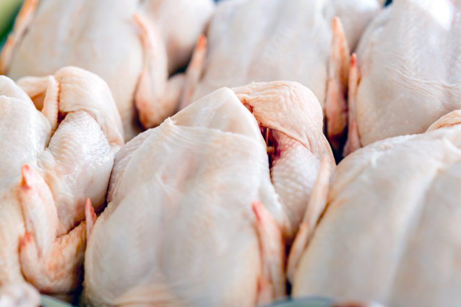 Frango: demanda aquecida e oferta limitada elevam preços da carne ...