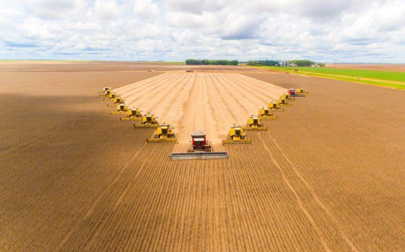 Resultado de imagem para foto de Brasil ultrapassará EUA como maior produtor de soja